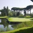 Emporda Golf #6 Green Forest